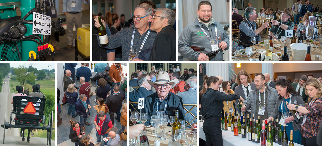 Grid of photos from 2019 Eastern Winery Exposition